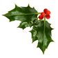 holly-berries_edited.png