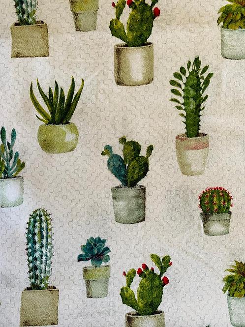 Masks- succulents potted