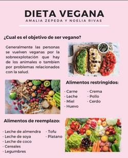 Infografía Dieta Vegana