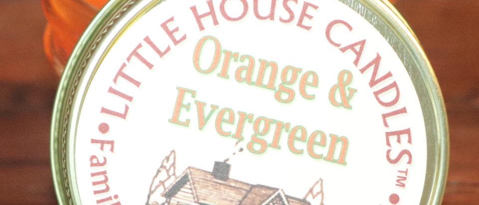 Orange & Evergreen - JellyJar