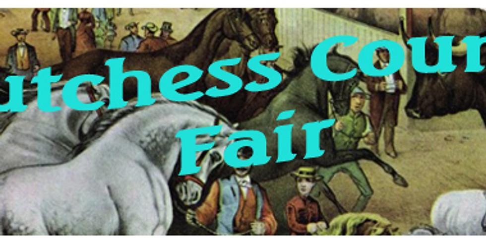 Dutchess County Fair (1)