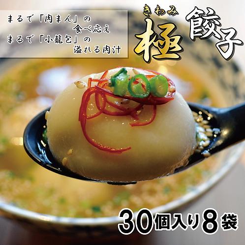 ※業者様おススメ※水餃子専用【極餃子】30個×8袋(240個)