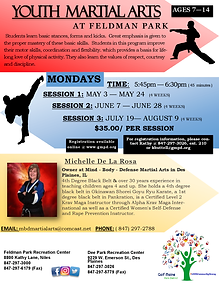 Youth Martial Arts Flyer 2021-UPDATED SE