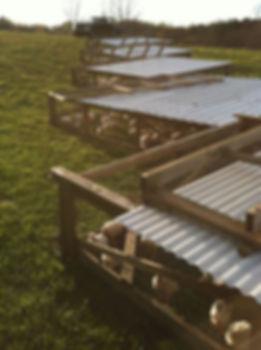 Chicken Tractors, Pasture Raised Chicken