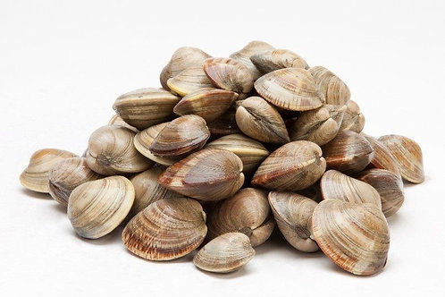 Littleneck Clams, 25 count