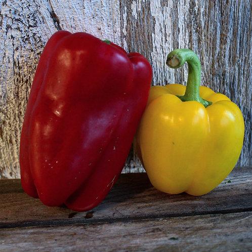 Bell Pepper, 2/pk