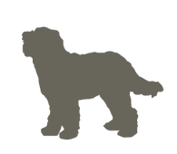 Labradoodle_silhouettes5.png