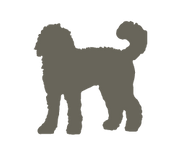 Labradoodle_silhouettes3_edited.png