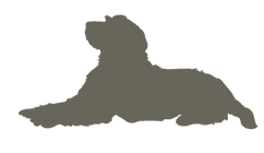Labradoodle_silhouettes7.png