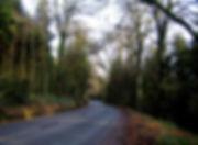 C M woods.jpg