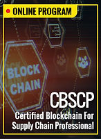 ISCEA-Online_18. CBSCP.jpg