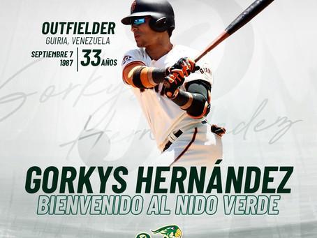 GORKYS HERNÁNDEZ, NUEVO JUGADOR DE LOS PERICOS DE PUEBLA.