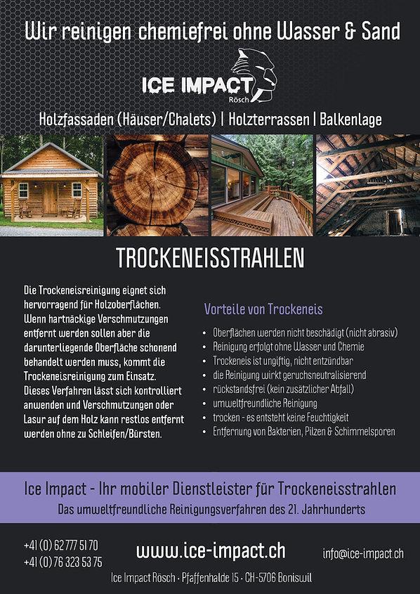 Holzreinigung Flyer.jpg
