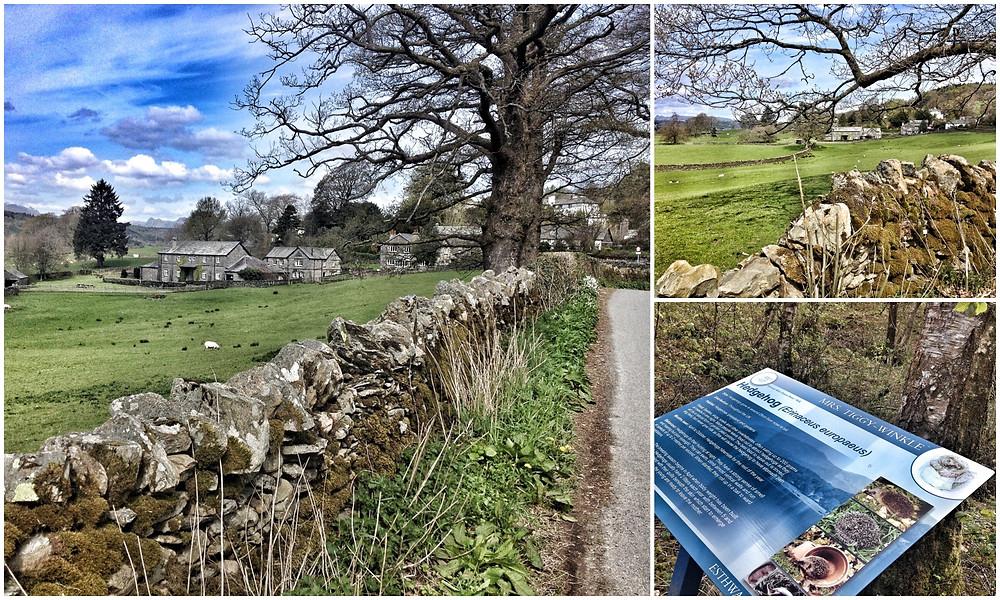 UK England Großbritannien Lake District Blog Roadtrip Christin Otto Leuk Hill Top Beatrix Potter