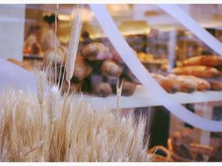 Köln: Das beste Brot der Stadt