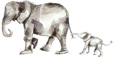 Catherine-Rayner-Elephant-Calf.jpg