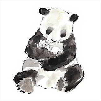 Catherine Rayner Panda