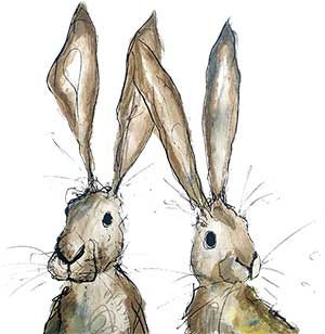 Catherine-Rayner-Rabbits.jpg