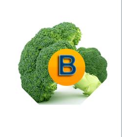 b letra