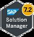 SAP Solman