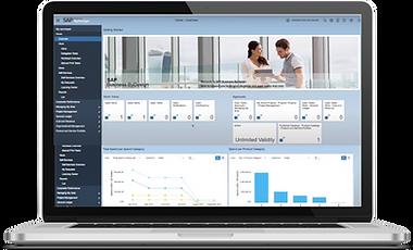 SAP Business ByDesign Display.png