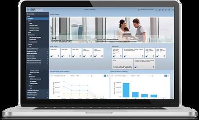 SAP Business ByDesign Display
