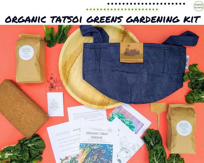 Organic Tatsoi Leafy Greens Gardening Kit