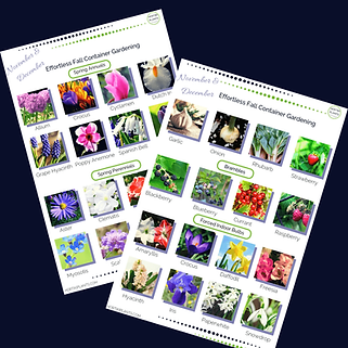 Planting Guide Instagram Post Template(1