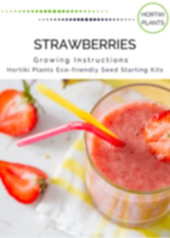 Strawberry INSTRUCTIONS APRIL 2020(1).pn