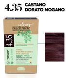 4.35 CASTANO DORATO MOGANO