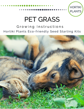 Pet Grass Growing Instructions 12.17.19(