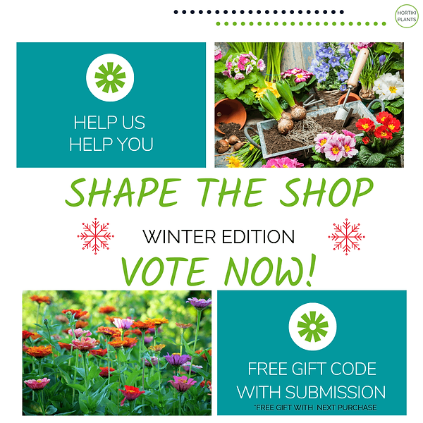 shape the shop poll (2) (1).png