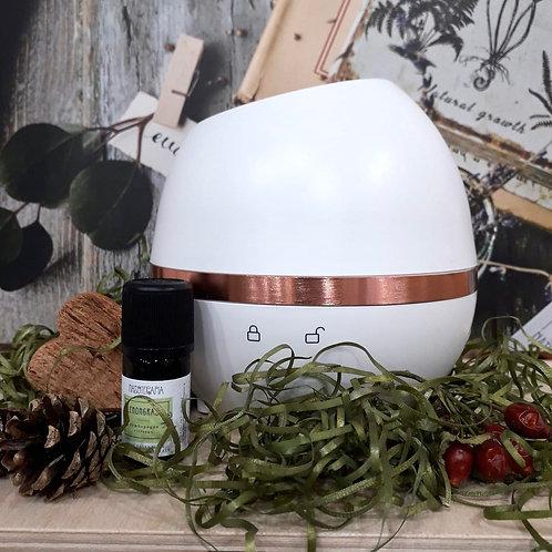 MOVE lampada a ultrasuoni senza fili + olio essenziale lemongrass
