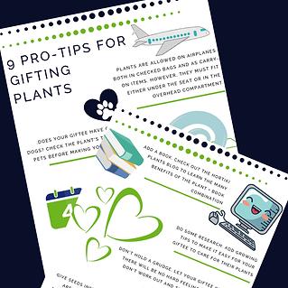 gifting tips image(1).png