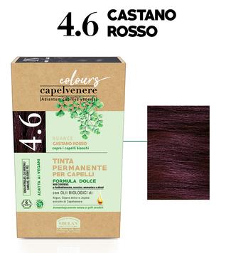 4.6 CASTANO ROSSO
