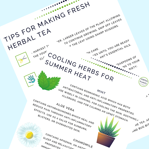 3 keep cool garden tips for(4)(1).png