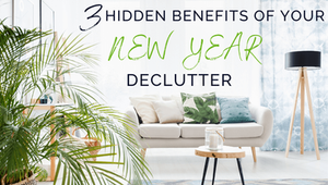 Hortiki Plants Blog cover image of bright clean living room filled with plants. Text on Image states: Three Hidden benefits of your New Year declutter