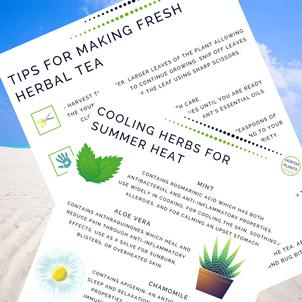 Free tips on herbal tea