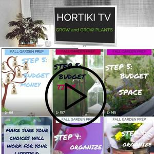 Hortiki TV videos available