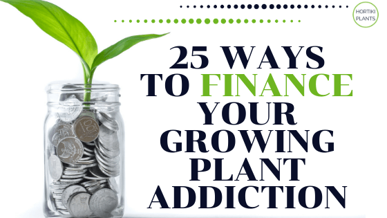 Blog Post Image with a plant growing from jar of coins. Text reads 25 ways to finance your growing plant addiction