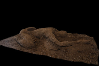 soil2.jpg
