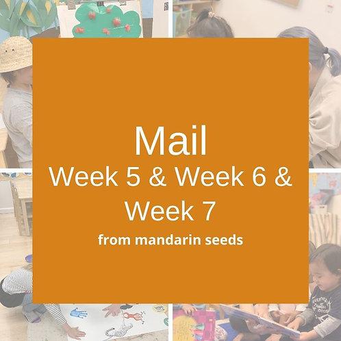 Wk5 & Wk6 & Wk7 Big Kids Summer Material Mail