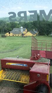 Hay Tedding Baling
