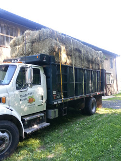 One of our trucks delivering hay