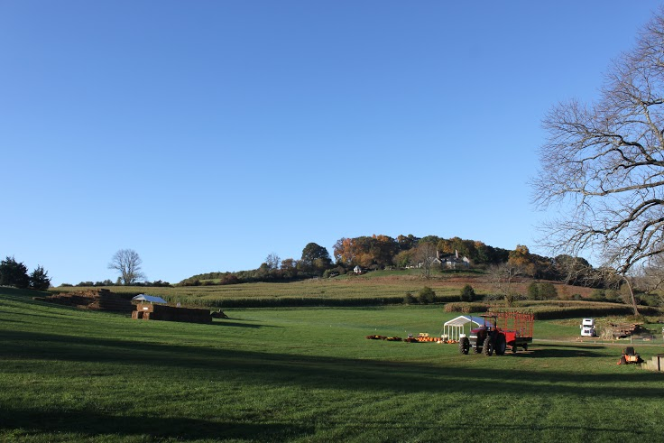 View of Middle Valley Farm