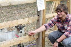 Pet and Feed the Farm Animals
