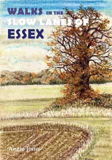 Walks in the Slow Lanes of Essex