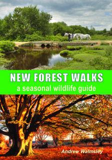 New Forest Walks a seasonal wildlife guide