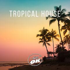 tropical house.jpg