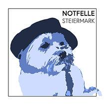 Notfelle Steiermark.jpg